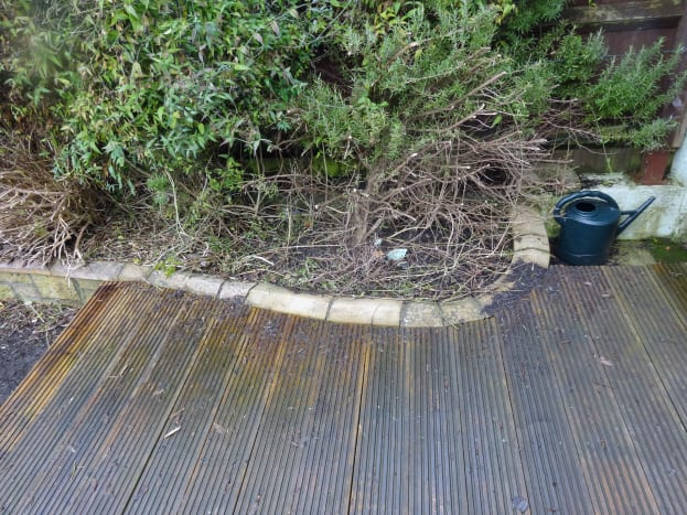Decking following the contours of the flowerbed.