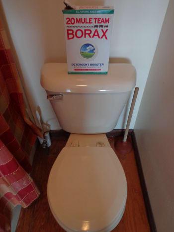 toilet #1 and Borax