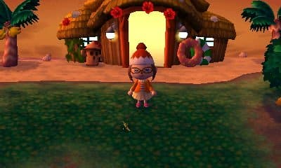 It is always summertime on the island, allowing players to catch both bugs and fish.