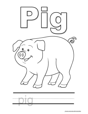 Big Pig Coloring Page