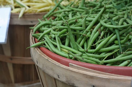 Freshly harvested green beans. (Photo courtesy from Anne Brones - Flickr)
