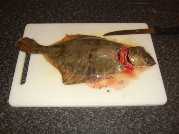 The head is cut from the flounder and removed
