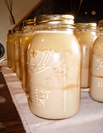 These jars were processed at 15 lbs. pressure, which I had been advised was correct for my elevation. It was too much, and actually blew the milk apart into liquids and solids, creating a cottage cheese texture.
