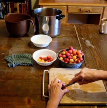 Using a sharp paring knife, slit open each plum, making a whole through which you can squeeze the seed.