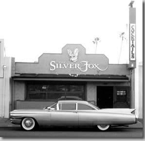 The Silver Fox