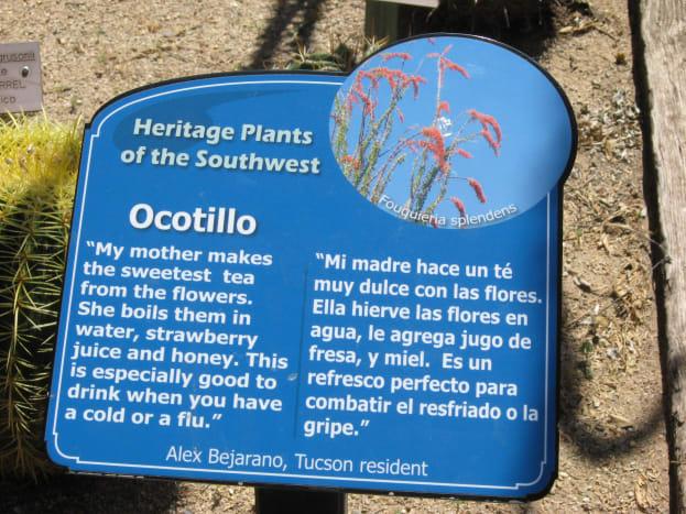 Descriptive sign in succulent garden section of Tucson Botanical Gardens
