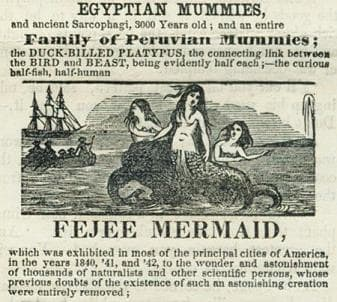 """An advert for P.T. Barnum's """"Feejee Mermaid"""" in 1842 or thereabout."""