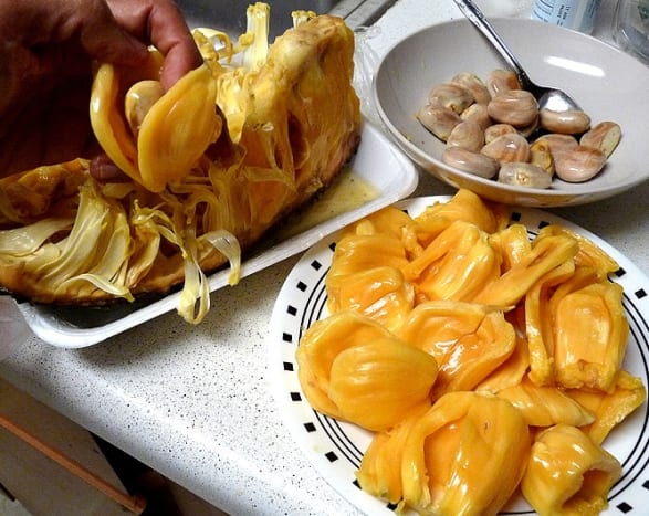 Jackfruit arils and seeds