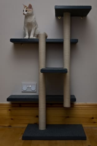 Make Your Own Cat Trees Towers And