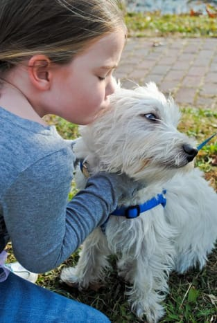Westies are great with kids as long as they have time for other activities.