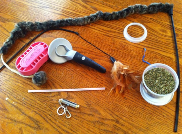 Various toys used to entertain cats.