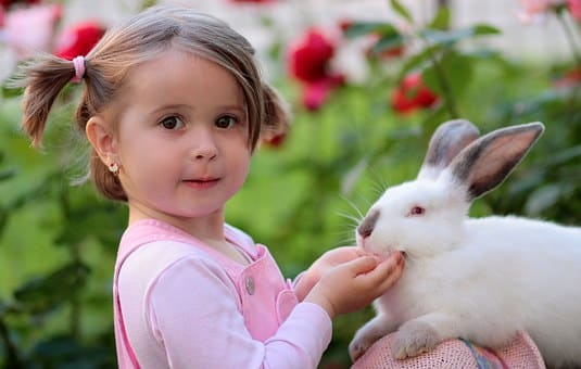 When handled correctly, rabbits are very affectionate pets.