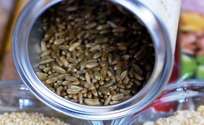 Grains of freekeh