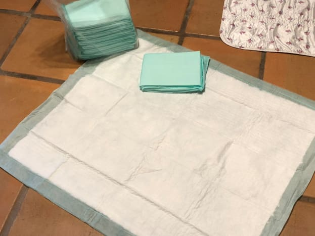 Extra large Piddle Pads from Drs Foster and Smith