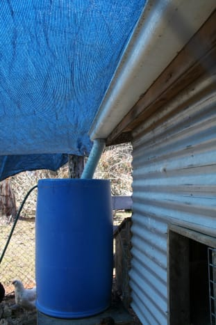 Shade cloth for summer protects the entry ramp from excessive heat and also keeps their water tank shaded.