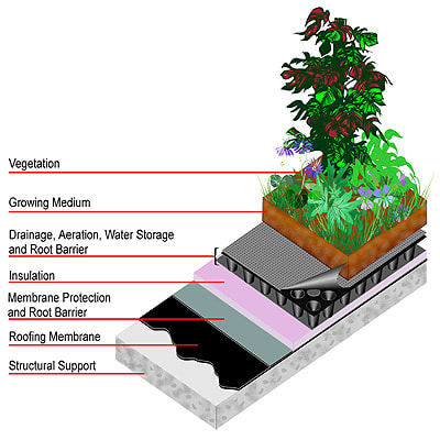 Green roofing is used n Oakland CA, New York City, Washington DC, and other cities already.