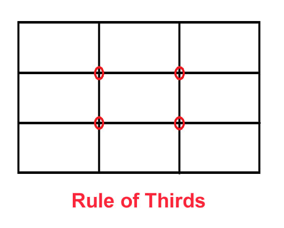 The Rule of Thirds provides suggestions for where to places focal points. The red dots are strong positions, and any of the lines are great.