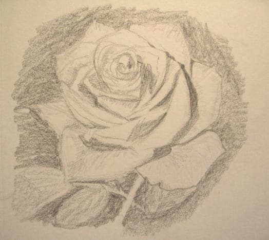 Final sketch of a rose