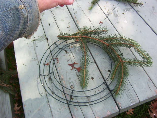 Fixing the First Evergreen Fronds to the Frame