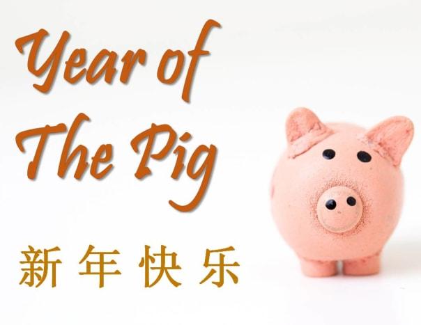 Little Piggy Bank Card