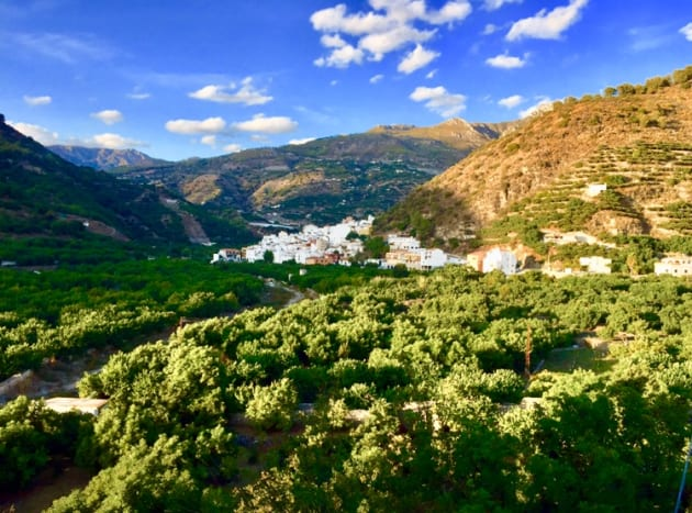 Jete, the heart of  the Valley of Rio Verde. Medlar, figs, mango, custard apple and grapes are some of the varieties which are grown in the valley.