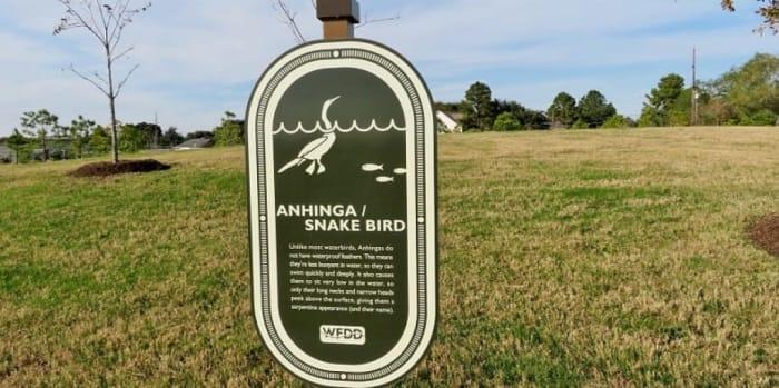 Anhinga / Snake Bird Sign Information