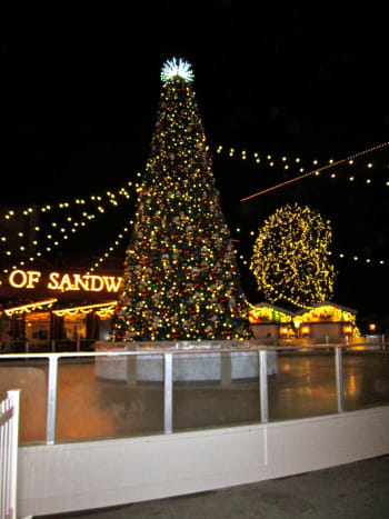 The ice skating rink in Downtown Disney has a Christmas tree in the middle.