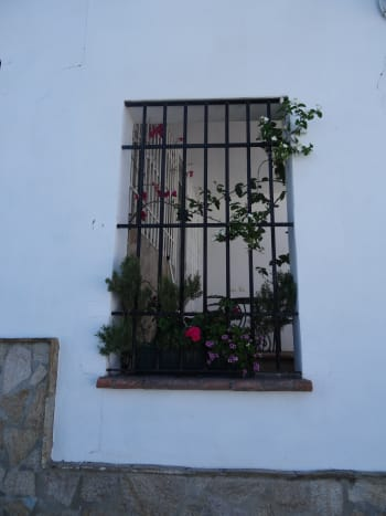 Like Many Towns in Andalusia, Olvera Boasts Pretty Plants, Windows, and Doors.