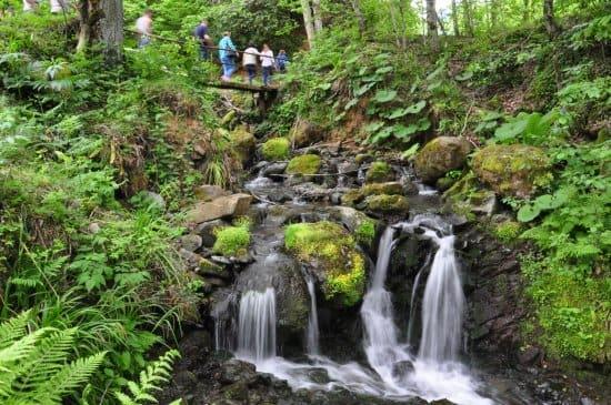 Mtirala National Park Waterfalls