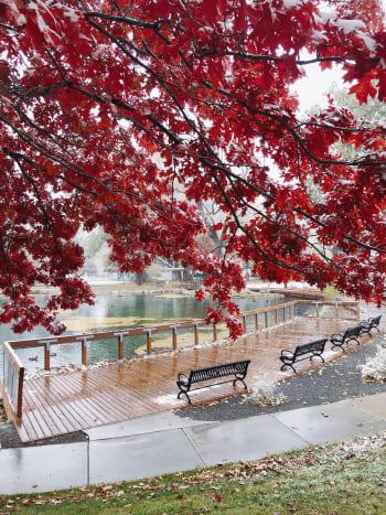 Fall in Fairmont Park, Utah
