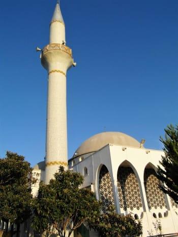 The mosque at Dipkarpaz.
