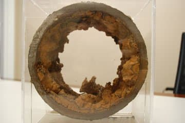 A cross-section view of a piece of  water distribution pipe from Walkerton.