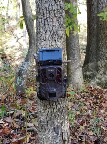 Spypoint Solar-W Trail Camera