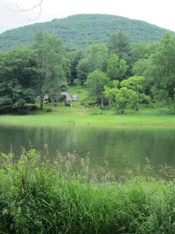 Pine Creek Gorge, southern portion, Waterville, PA