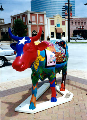 Hill Country Cow
