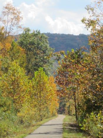 Sandy Creek Trail in fall