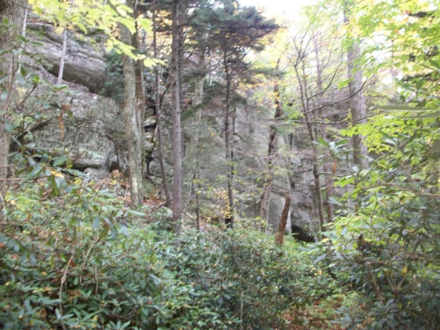 tanawha-trail-blue-ridge-parkway-blowing-rock