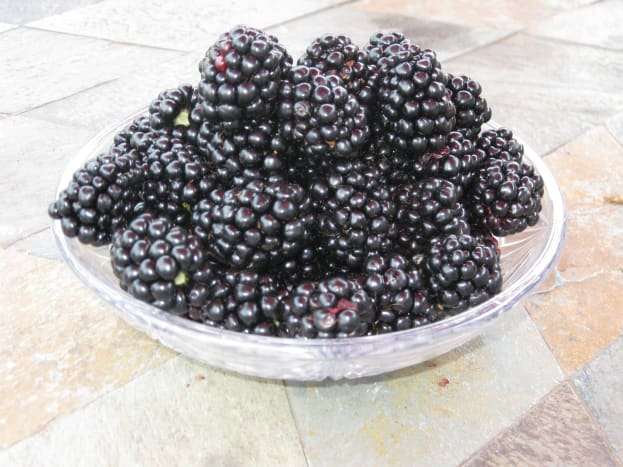 Fresh blackberries off the vine