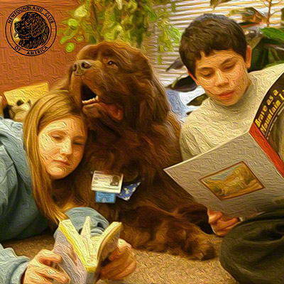Therapy Dogs work in many settings