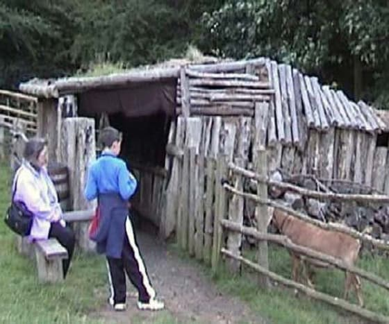 Animal pen outside peasant hut at Mountfitchet castle