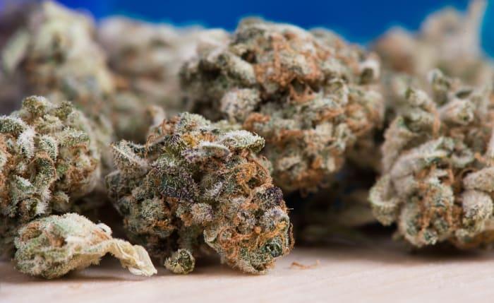 Green variety of cannabis