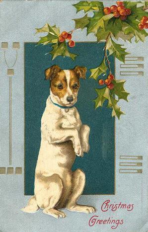 Vintage begging dog Christmas card