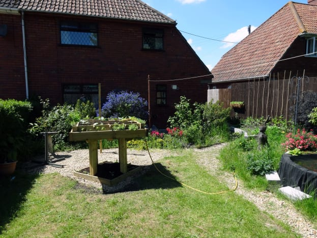 Raised veg bed made with decking