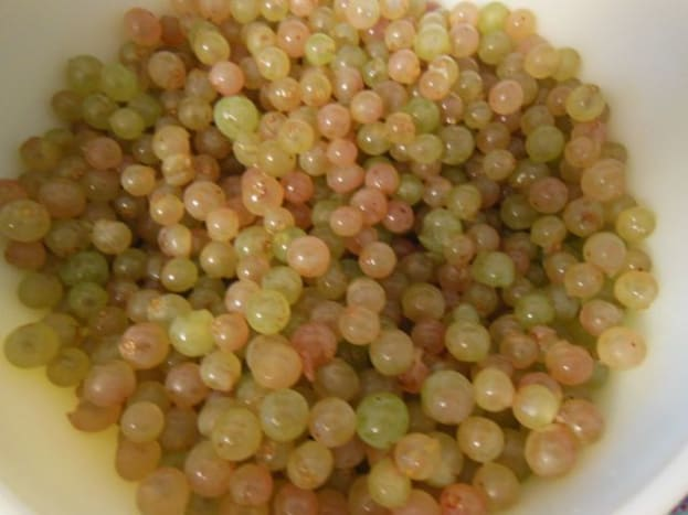 First, you wash and clean the grapes.  Pick out stems plus anything mushy, gross, buggy, moldy, and keep just the nice grapes.  It's a sticky job.