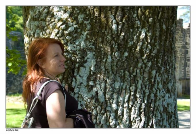 Kathleen and the Nostradamus Tree