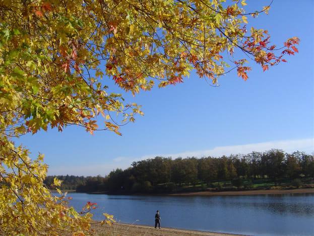 Videix Lake in autumn