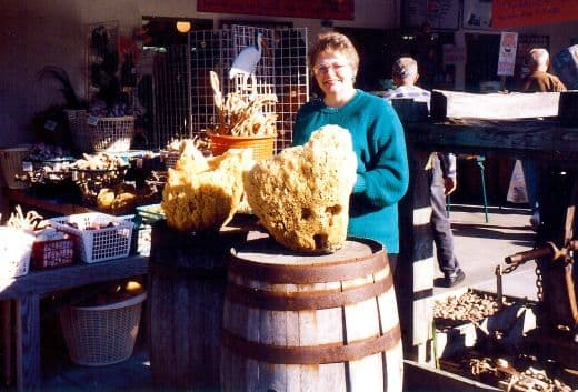 Look at the size of those sponges!
