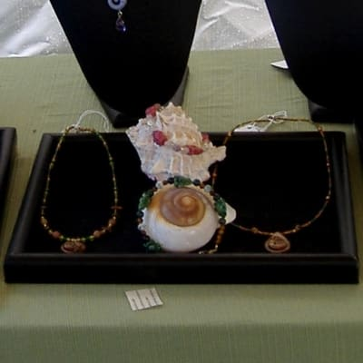 Sea Shells Displaying Bracelets