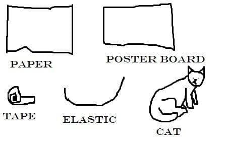 Get your supplies ready!  Paper, poster board, tape, elastic, and of course, a cat.