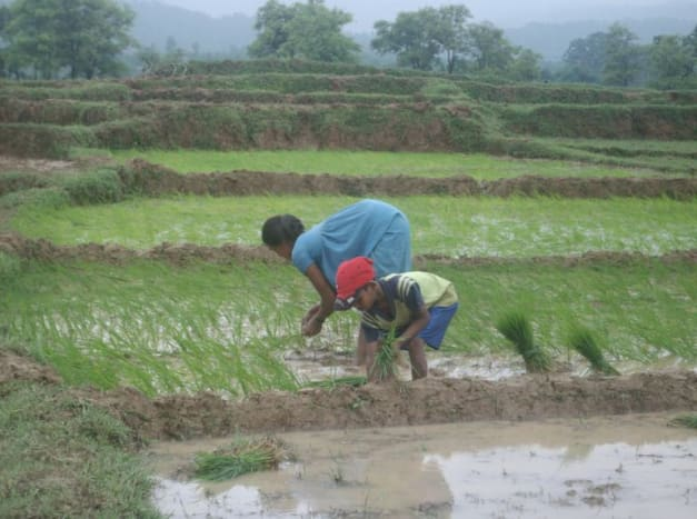 Mama's boy: This kind of scene is everyday thing for the people in Nepal during the rainy season.